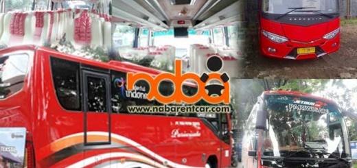 Bus-Pariwisata-01